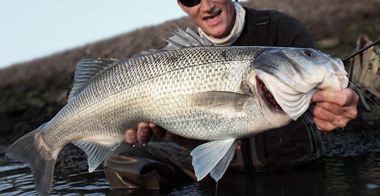 bassfishinglocation