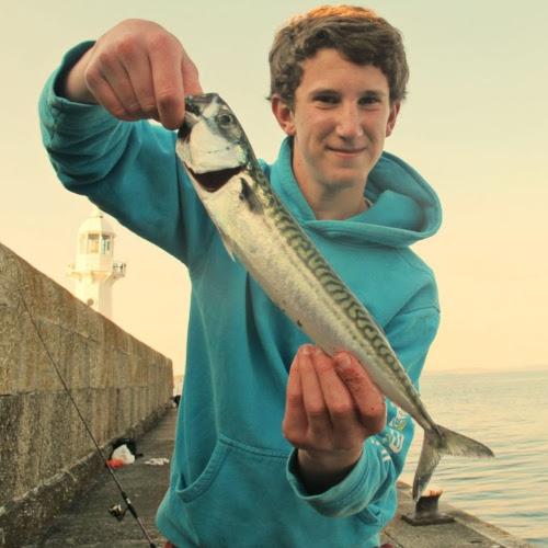 mackerel on float